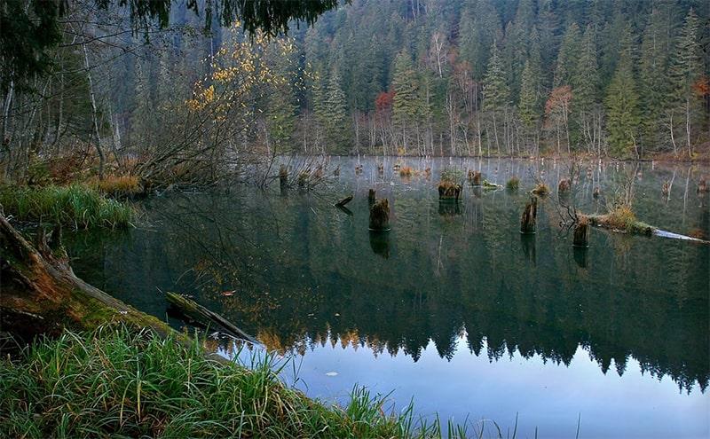 lacul rosu harghita royaltrip excursie